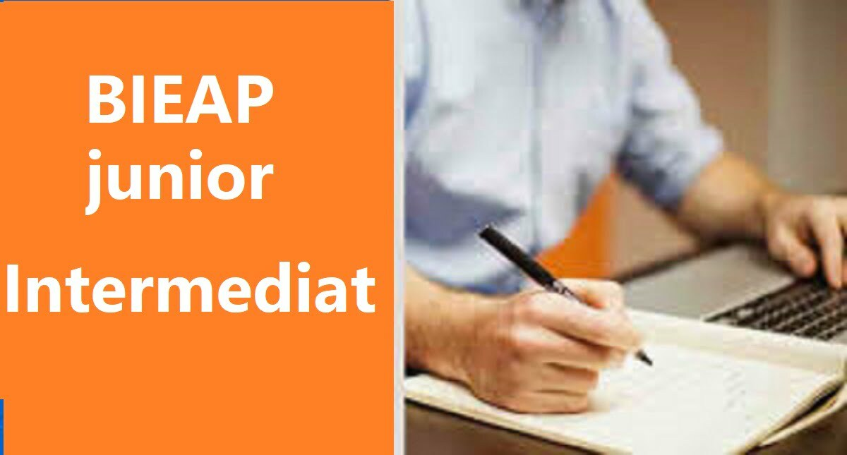 AP Jr Inter Model Paper 2020 BIEAP 1st Year Blueprint 2020