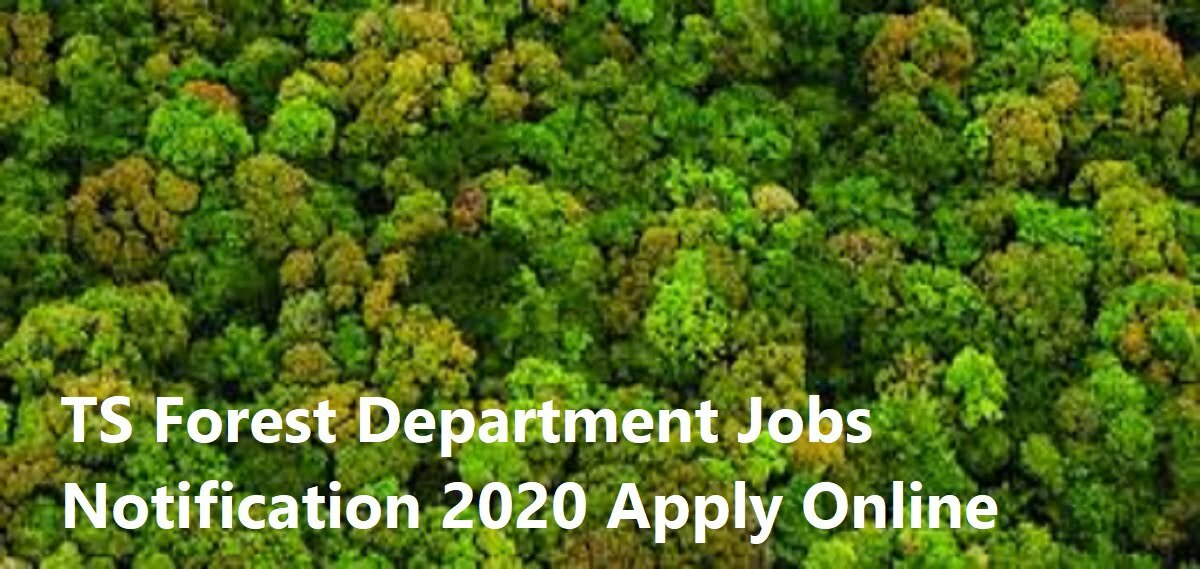 TS Forest Department Jobs Notification 2020 Apply Online Eligibility Exam Date